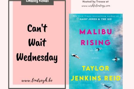 Can't Wait Wednesday - Malibu Rising