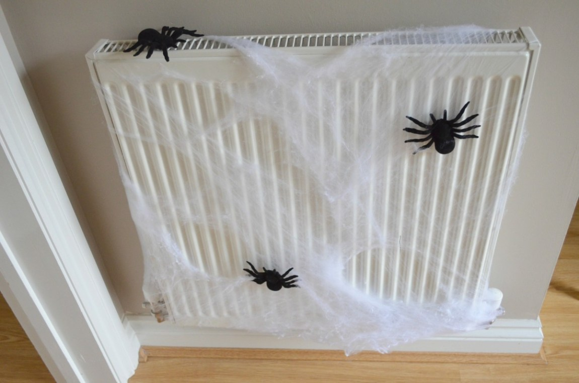 Home Bargain Halloween Spiders