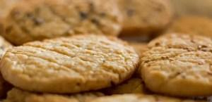 Biscuits apéritif à l'emmental