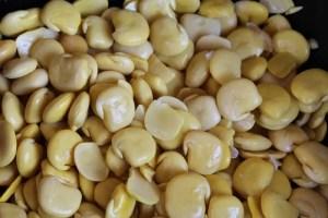 graines de lupins épluchées