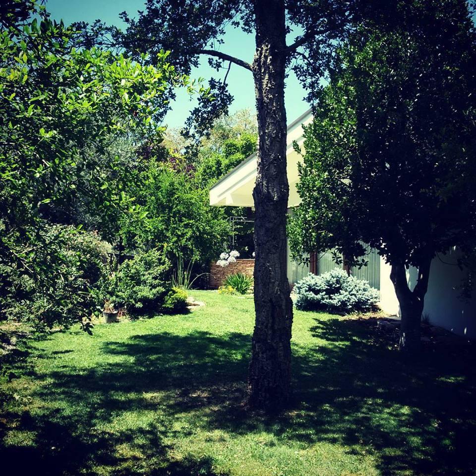 giardino in estate