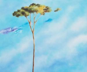 """""""Back to Nature"""": rassegna di pittura alla Saletta Corte dell'Angelo di Lucca"""