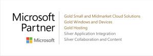triple gold microsoft partner