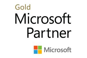 it support microsoft partner