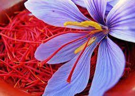 Azafrán o saffron extract