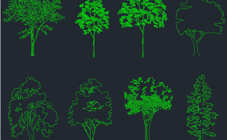 Elevation And Plan Of Trees : Trees and plant cad block free autocad