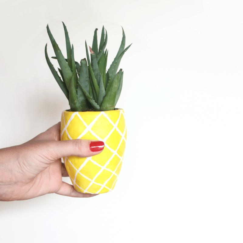 DIY Succulent Pineapple Planter