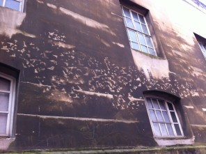 reverse graffiti birds on the Police Station, Bristol