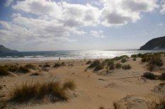 playa genoveses (0)