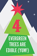 Infographie 10 Xmas facts part 4