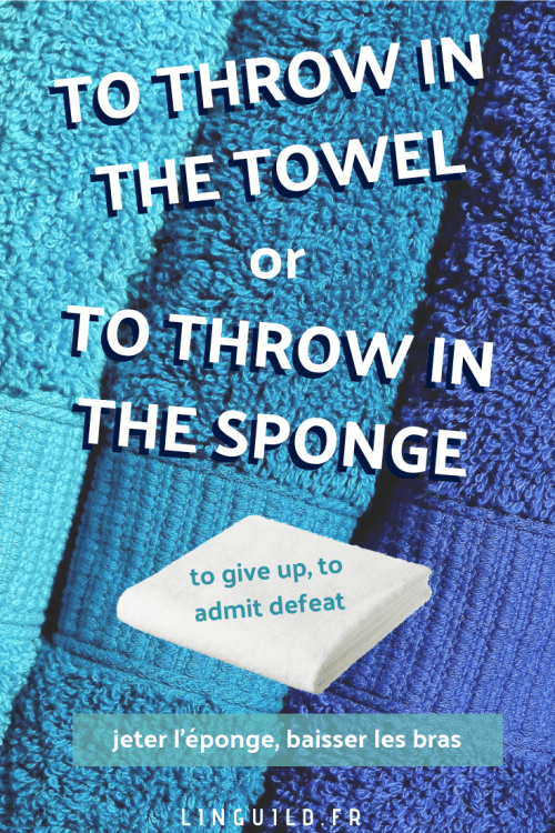 fiche idiom throw in the towel sponge