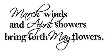 """""""March winds and April showers bring forth May flowers"""""""
