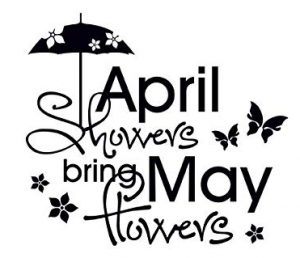 """""""April showers bring May flowers"""""""