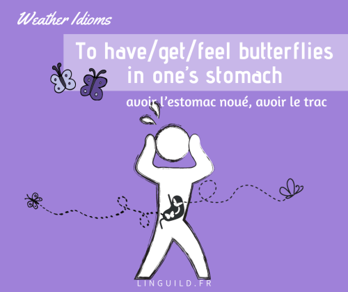 expression anglaise courante : to have/get/feel butterflies in one's stomach