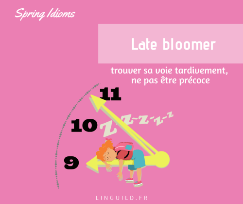 expression anglaise courante : late bloomer (us)