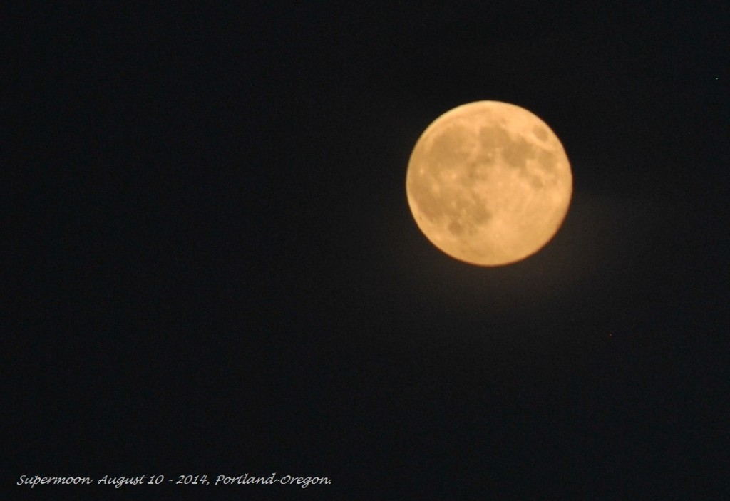 Super Moon August 10 - 2014 (7)