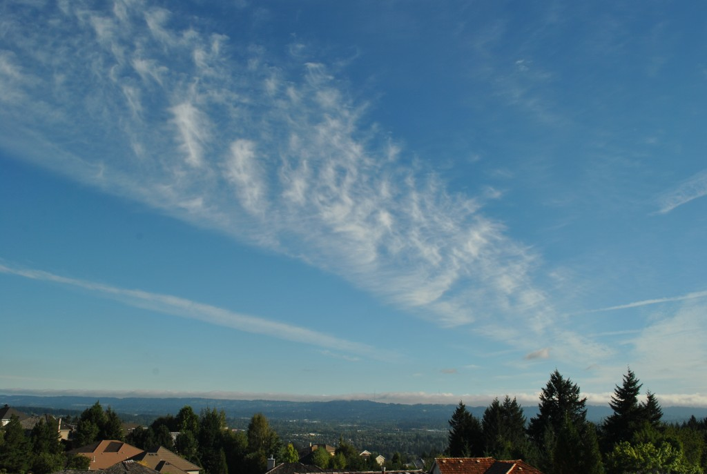 Bau troi ngay An Vi Phat Ngoc in Oregon 2014 (25)
