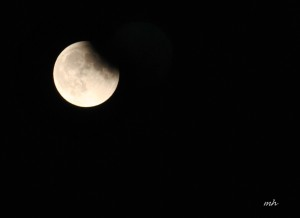 Lunar Eclipse Sept 27 - 2015 (5)