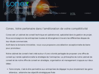 conex-consultants.com