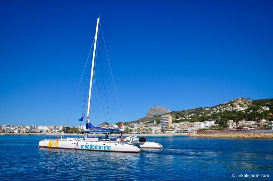 Catamarán de Mundo Marino