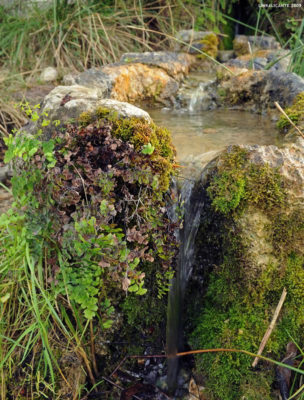 Barranc de l'Infern - Font del Reinós