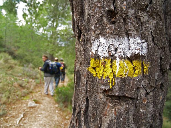 Puig Campana, cara norte