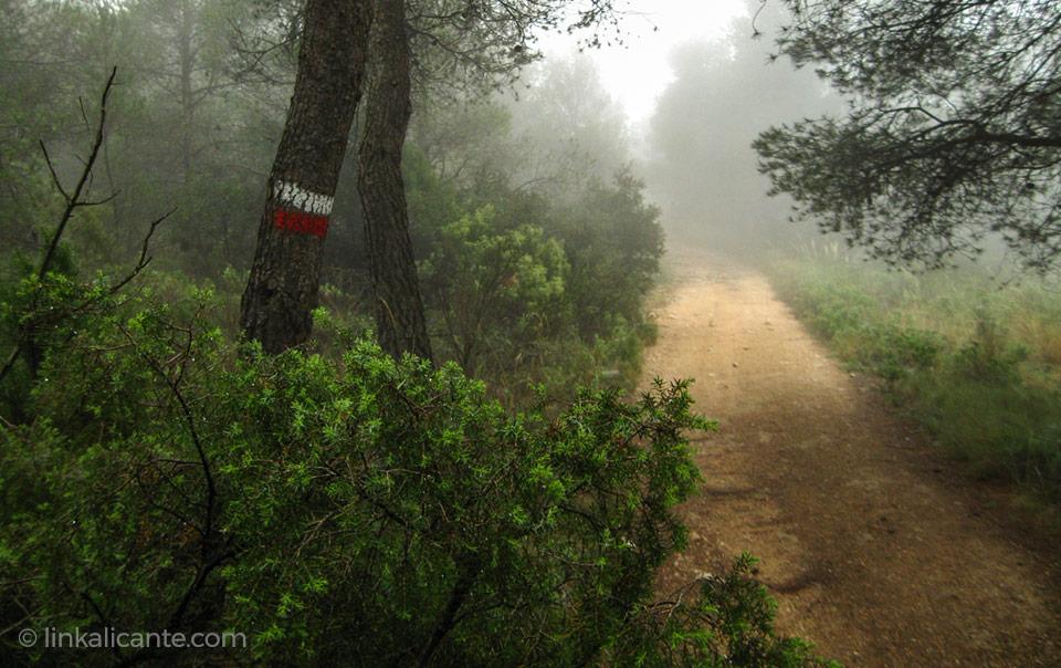10 Rutas de Senderismo poco conocidas de la provincia de Alicante