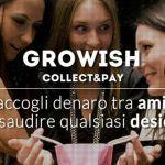 Growish raccolta denaro tra amici