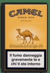 camel-orange-432x640