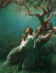 jJesús ora en el Getsemaní