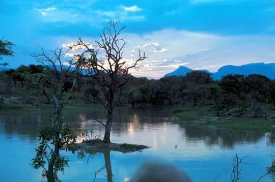 mpumalanga est une terrede montagnes, de forêts et de lacs. de grands