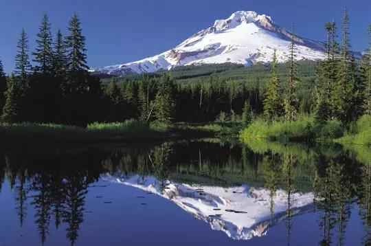 le site de mount hood national forest est réputé non seulement pour sa beauté,