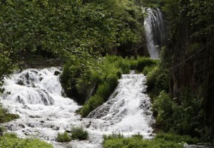 Linton Wildlife Photos - Spearfish Canyon, Roughlock Falls