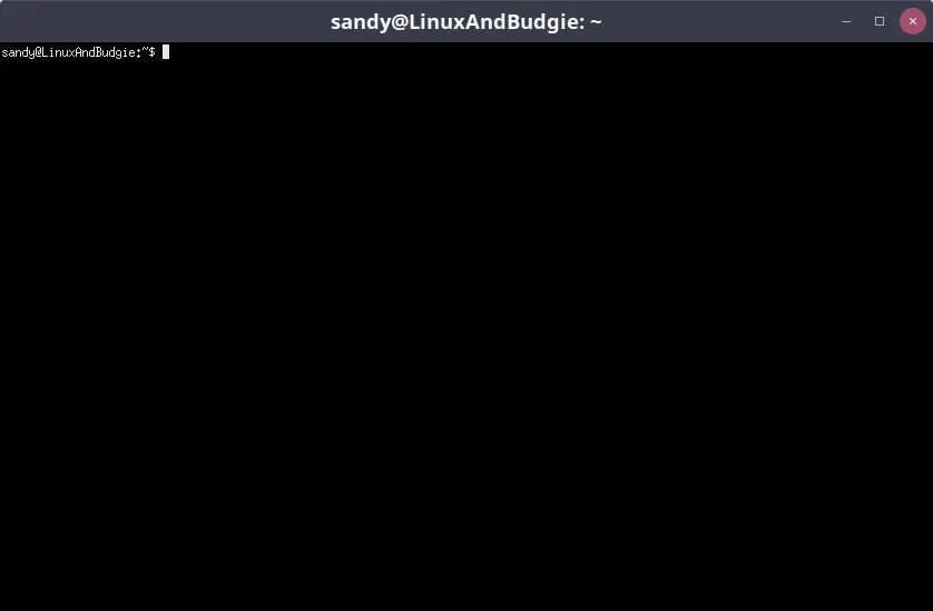 xterm linux terminal