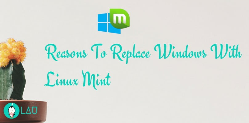 reasons to replace linux mint with windows