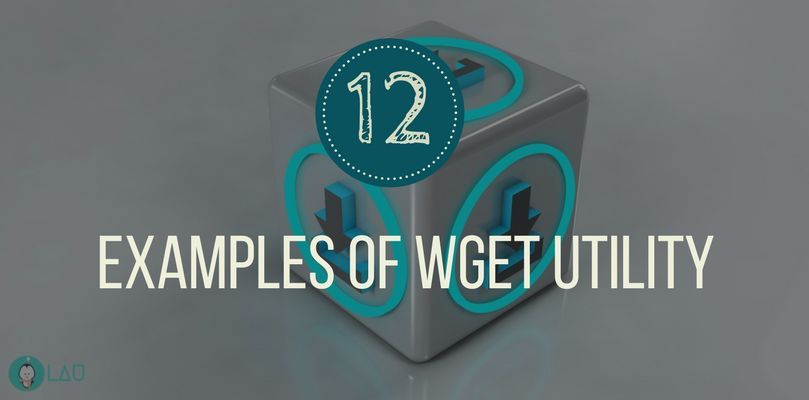 12 examples of wget unity