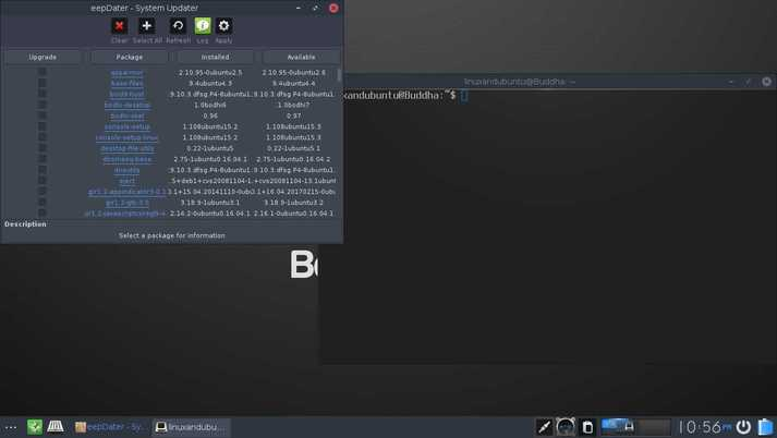 bodhi linux updater