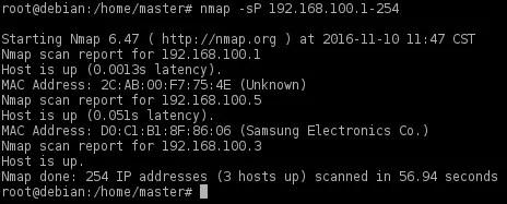 make nmap scan to lan