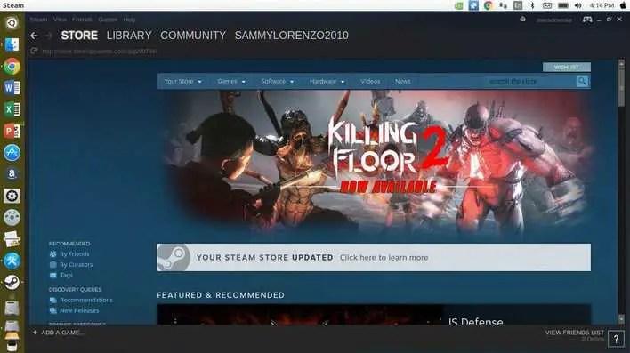 steam gaming platform for linux