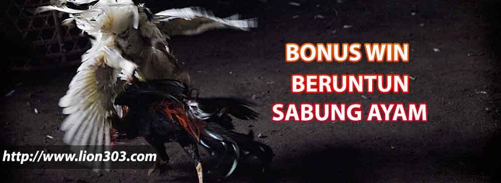 sabung-ayam-online-lion303-040318