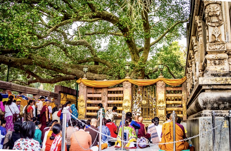 People meditating under the Bodhi Tree in Bodhgaya, India.