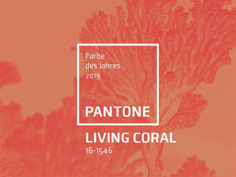 Living Coral Die Pantone Trendfarbe 2019 Lipödem Mode