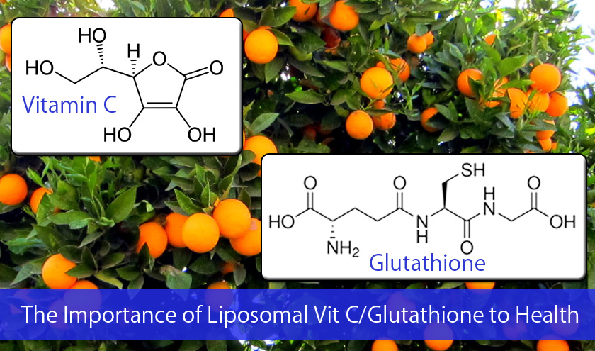 The Importance of Liposomal Vitamin C with Glutathione to Health