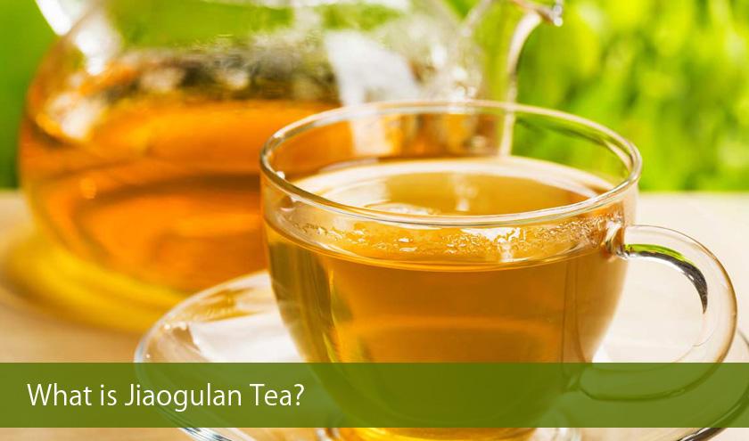 What is Jiaogulan Tea?