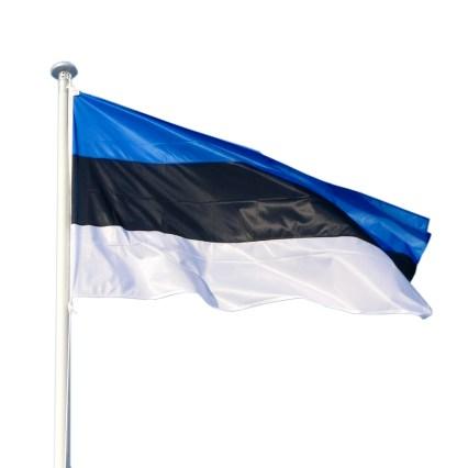 Eesti mastilipp