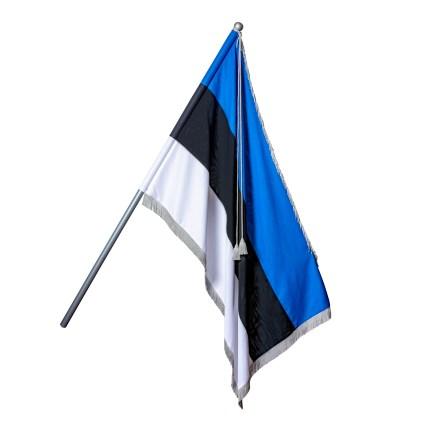 Pidulik Eesti lipp
