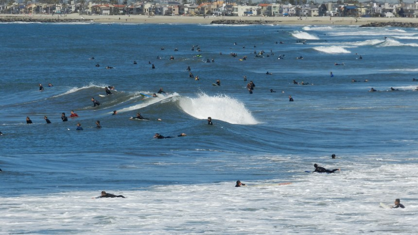 Hundreds of surfers at Newport Beach