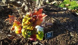 Vibrant gold and orange colored leaves greet you at the Fall Harvest Fairy Door 12.