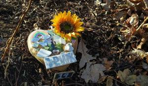 Bright golden sunflower, photo of Harry Styles, blue butterfly and rainbow adorn the Harry Styles Fairy Door 14.