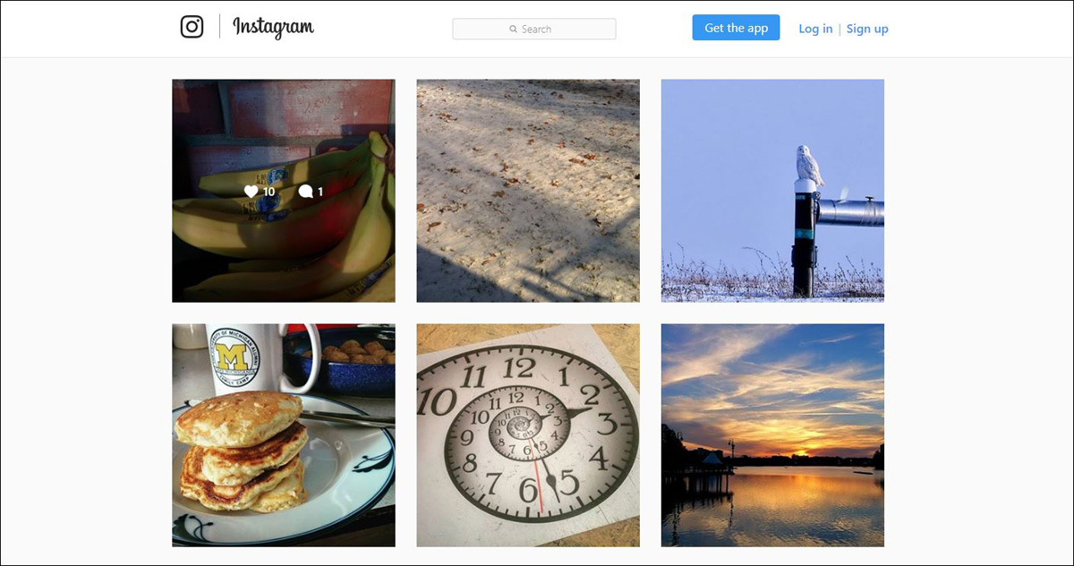 my Instagram home page with thumbnails showing Snowy Owl, red light on bananas, shadows on winter landscape, ammonite clock, Florida sunset, and stack of pancakes.